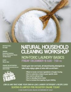 laundry-workshop-flyer-concept