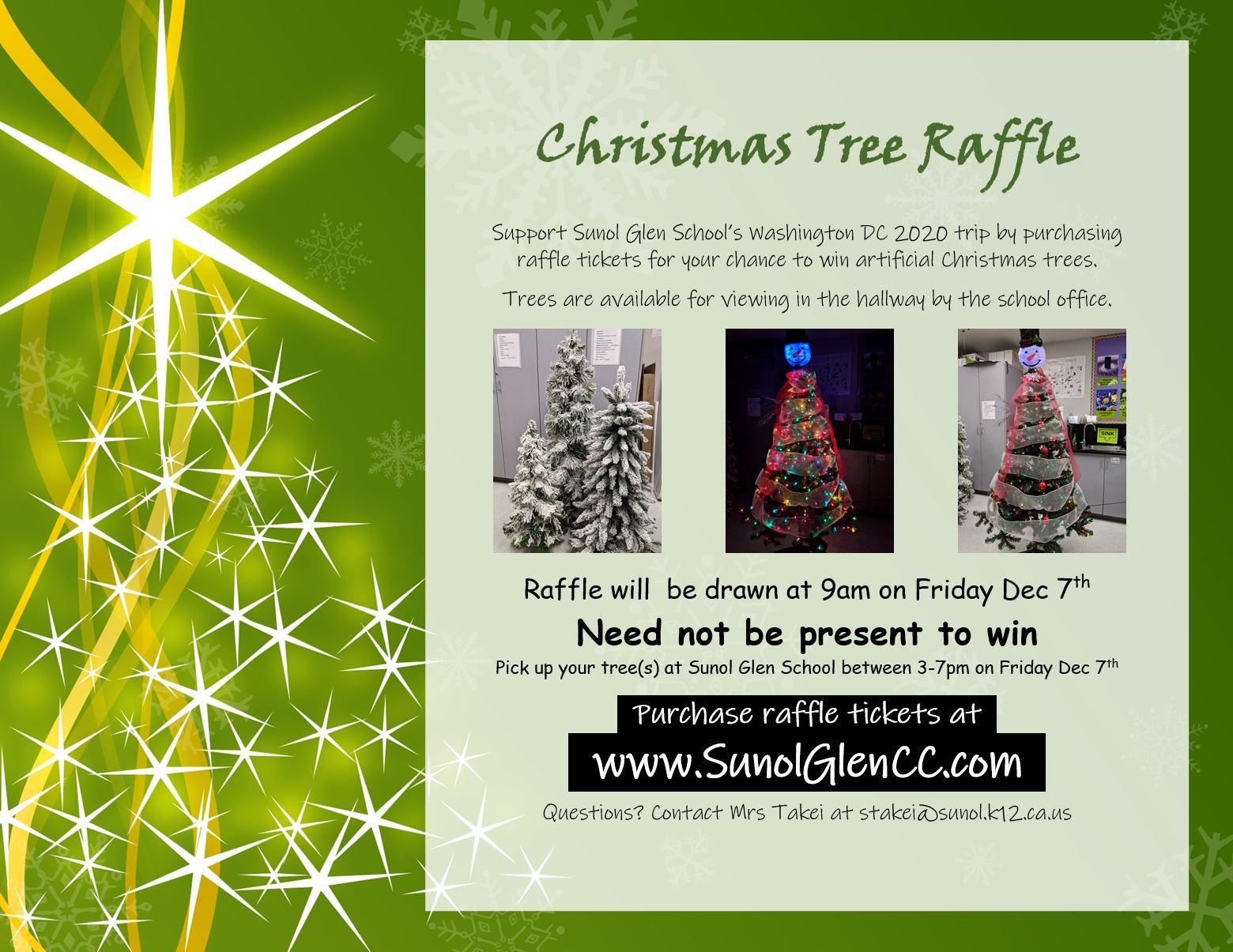 Washington DC 2020 Christmas Tree Raffle 2018   Sunol Glen School