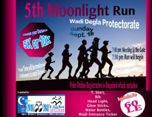 5th moonlight run poster