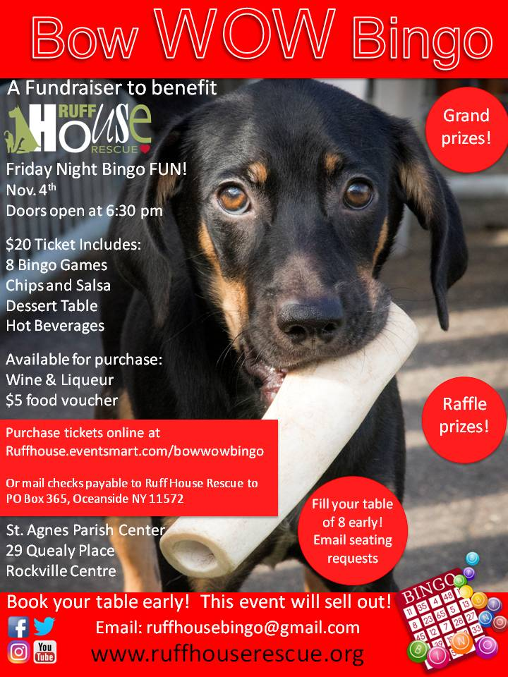 bow-wow-bingo-flyer-final