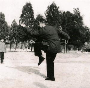 Wangzhuangfei